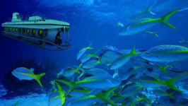 Sinbad Simi Submarine Tour from Hurghada