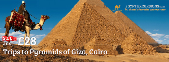 Egypt Excursions Day Trips Tours Excursions In Egypt
